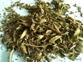50g Iboga rootbark (Tabernanthe iboga)