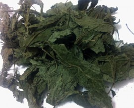 25g Salvia divinorum leaves